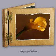 album drewniany CLASSIC standard 25 kart motyw ślubny nr 5