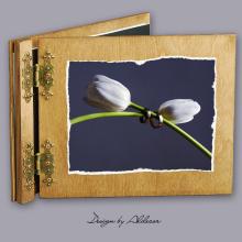 album drewniany CLASSIC standard 25 kart motyw ślubny nr 6