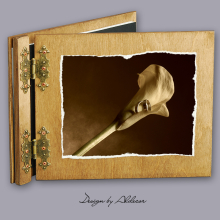 album drewniany CLASSIC standard 25 kart motyw ślubny nr 8
