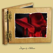 album drewniany CLASSIC standard 25 kart motyw walentynki 1