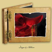 album drewniany CLASSIC standard 25 kart motyw walentynki 3